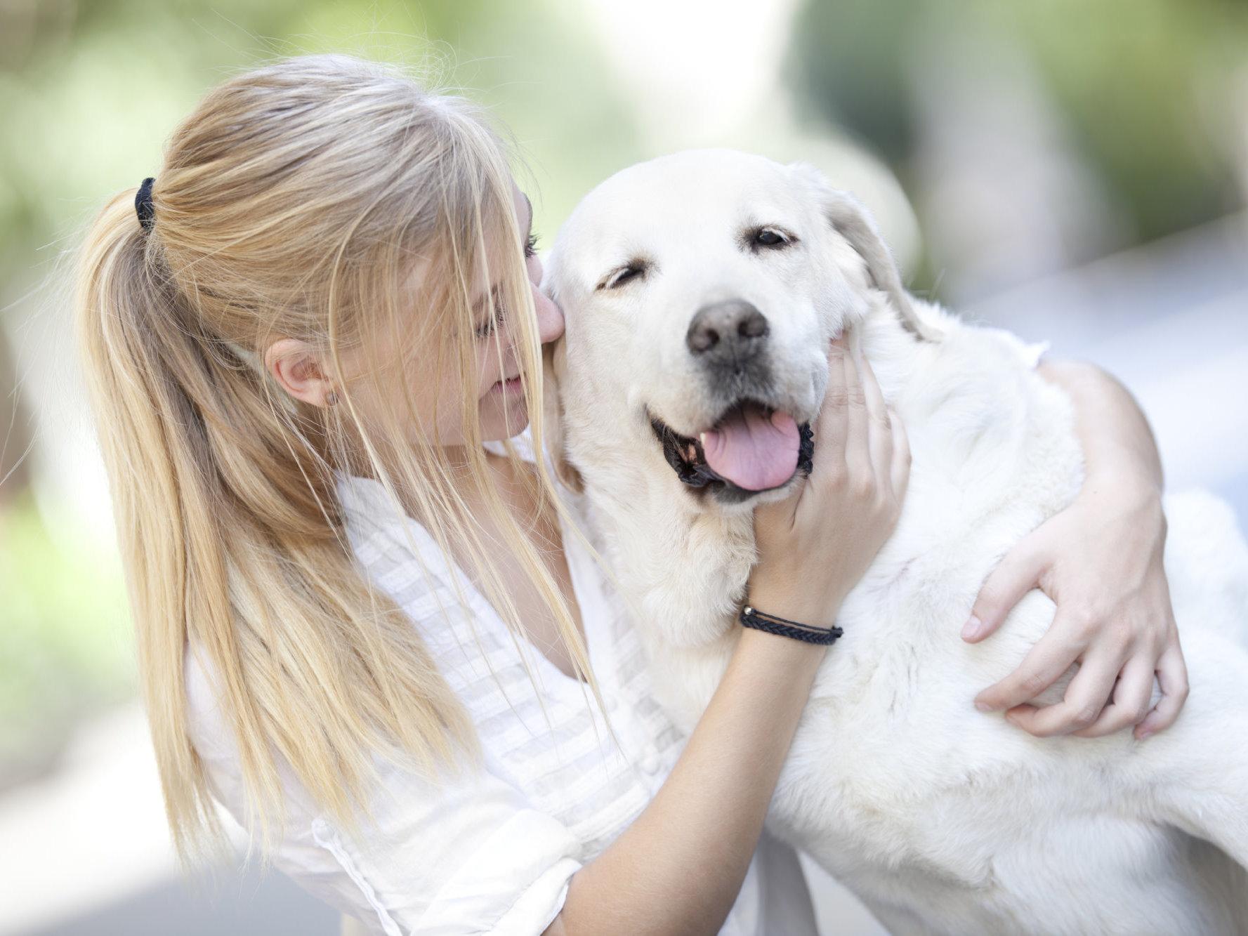 Alles Was Sie Zum Thema Hundekauf Wissen Sollten Mera